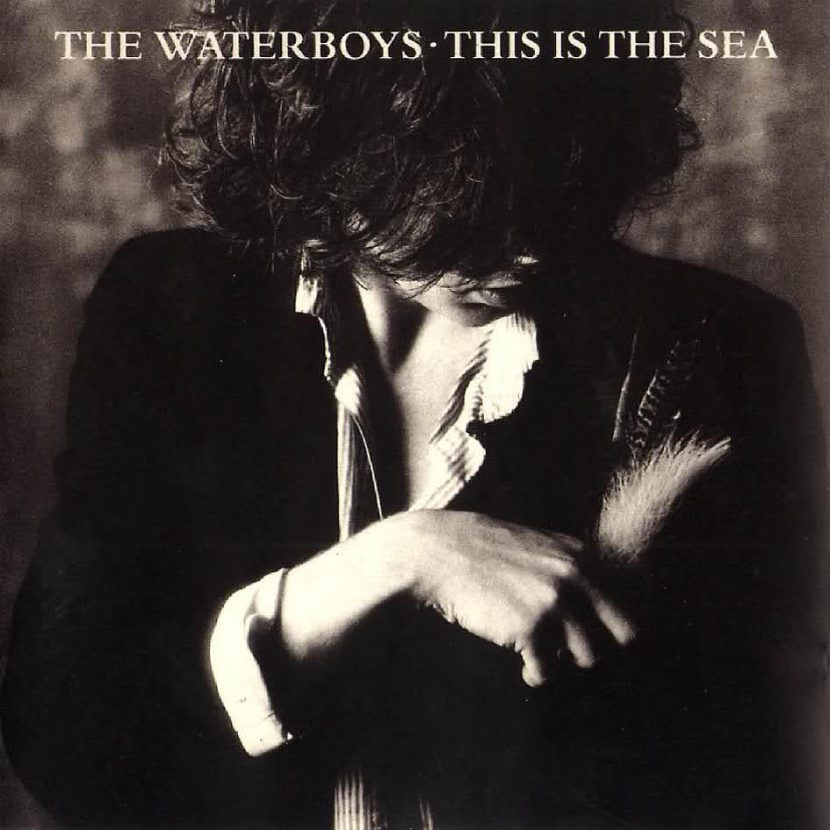The Waterboys: This is The Sea